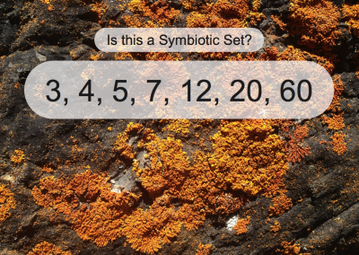 Lichen Puzzles – multiplication and subtraction